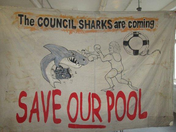 council sharks