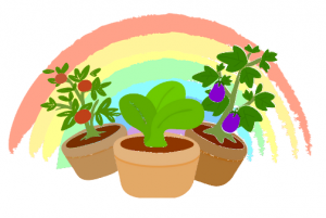 Illustration: Plant pots with rainbow behind