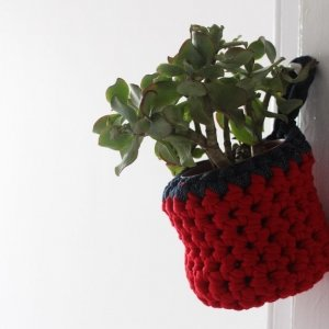 Red hanging basket with plant