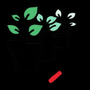 Illustration of potted plants